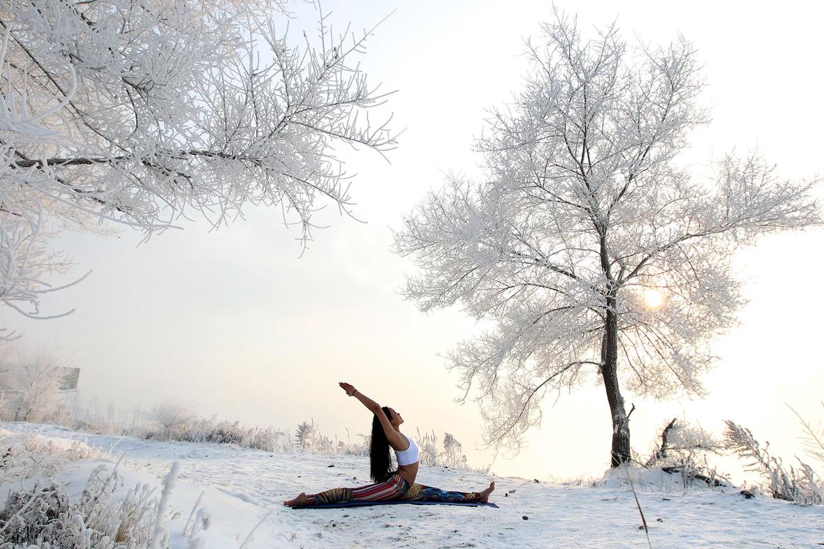 snow-yogo